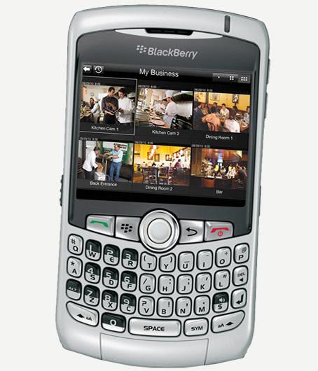 Blackberry Business Cellphone